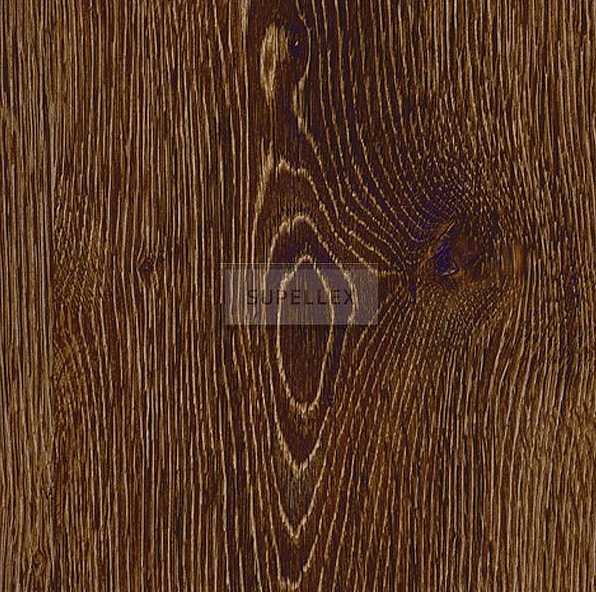 Evergreen Oak 22880